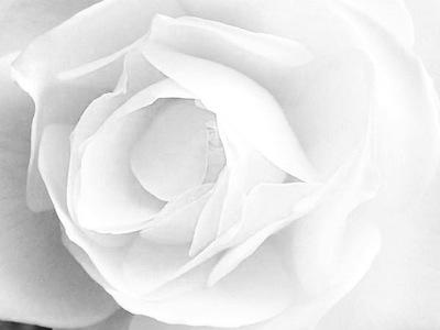 Il colore bianco nei sogni interpretazione numeri for Disegni del mazzo del secondo piano