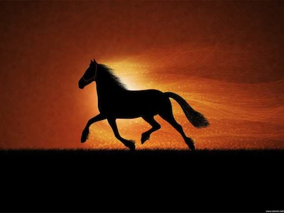 sognare cavallo significato interpretazionen numeri puledri